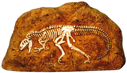Allosaurus Extinct Animals