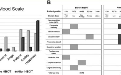 Retrospective Case Series of Traumatic Brain Injury and Post-Traumatic Stress Disorder Treated with Hyperbaric Oxygen Therapy