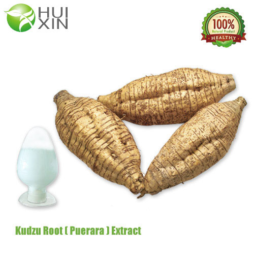Pueraria Root ExtractGlobal Supplier of Plant Extract