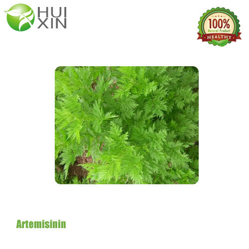 ArtemisininGlobal Supplier of Plant Extract Natural