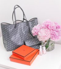 Paris designer bag reviews (Fendi, Prada, & newer Goyard ...