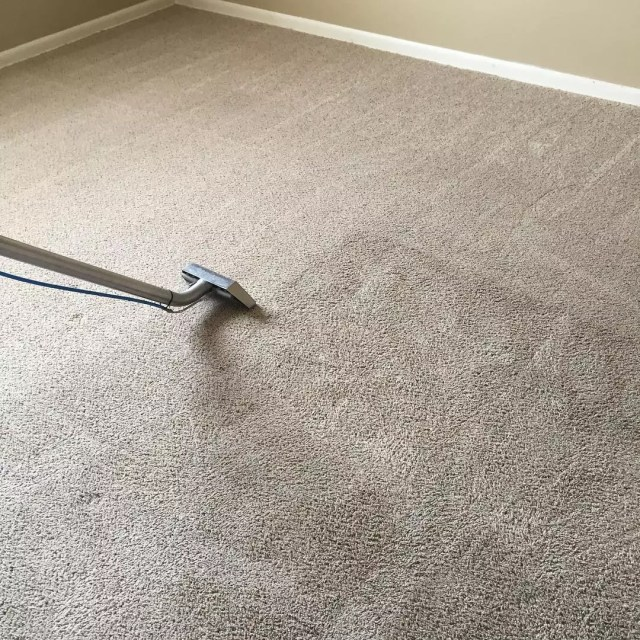 Deep carpet cleaner. Photo by Instagram user @carpetcleanse
