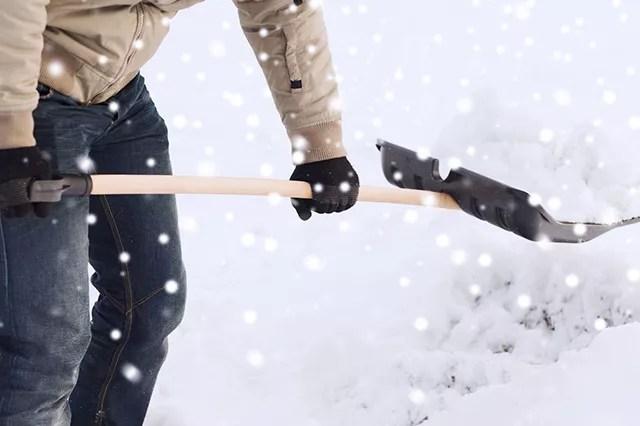 snow - good neighbor