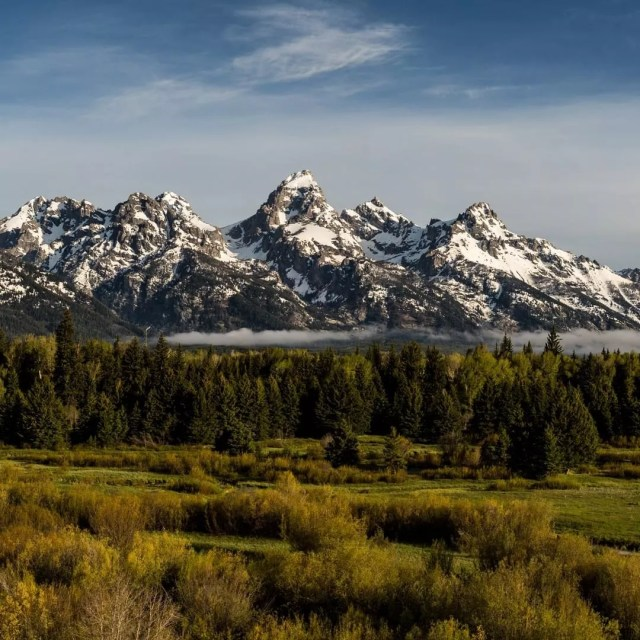 Mountains and Forests in Grand Teton National Park. Photo by Instagram user @grandtetonnps