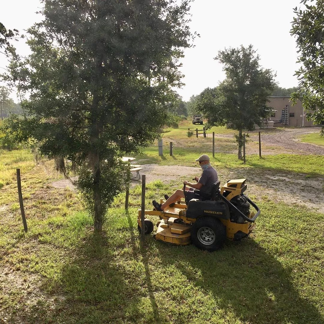 Man Using a Riding Lawn Mower to Mow the Grounds at Disney Wilderness Reserve. Photo by Instagram user @parkit.us