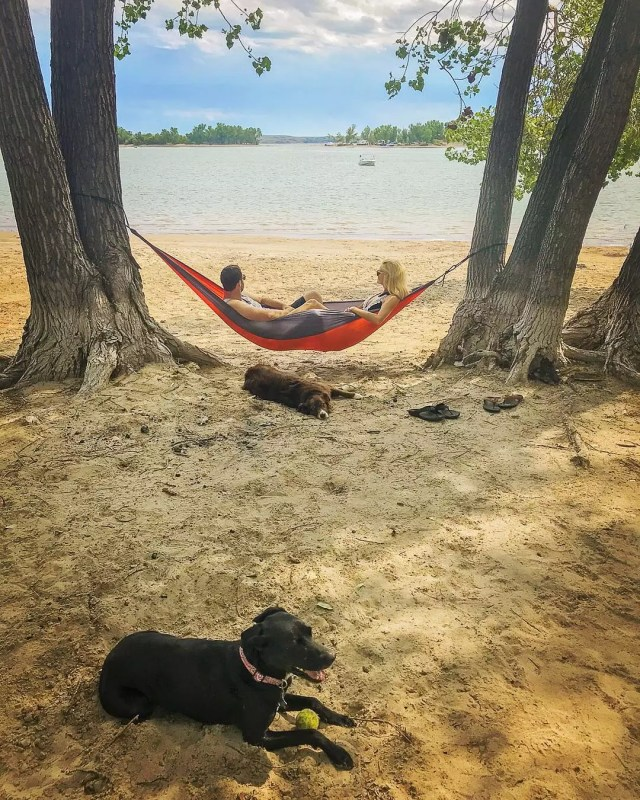 Couple in hammock on beach with dogs. Photo by Instagram user @follow_your_detour