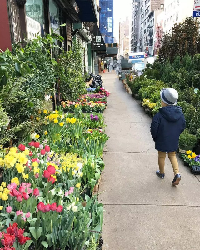 Child Walking Through a Flower Market in New York City. Photo by Instagram user @littlekidnyc