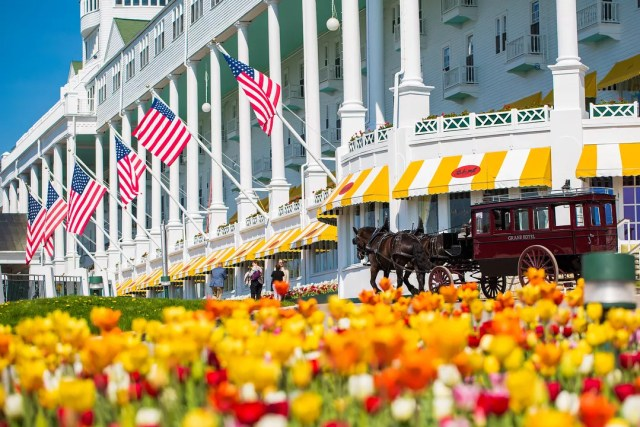 Colorful Tulips in Front of the Grand Hotel in Michigan. Photo by Instagram user @grandhotelmichigan
