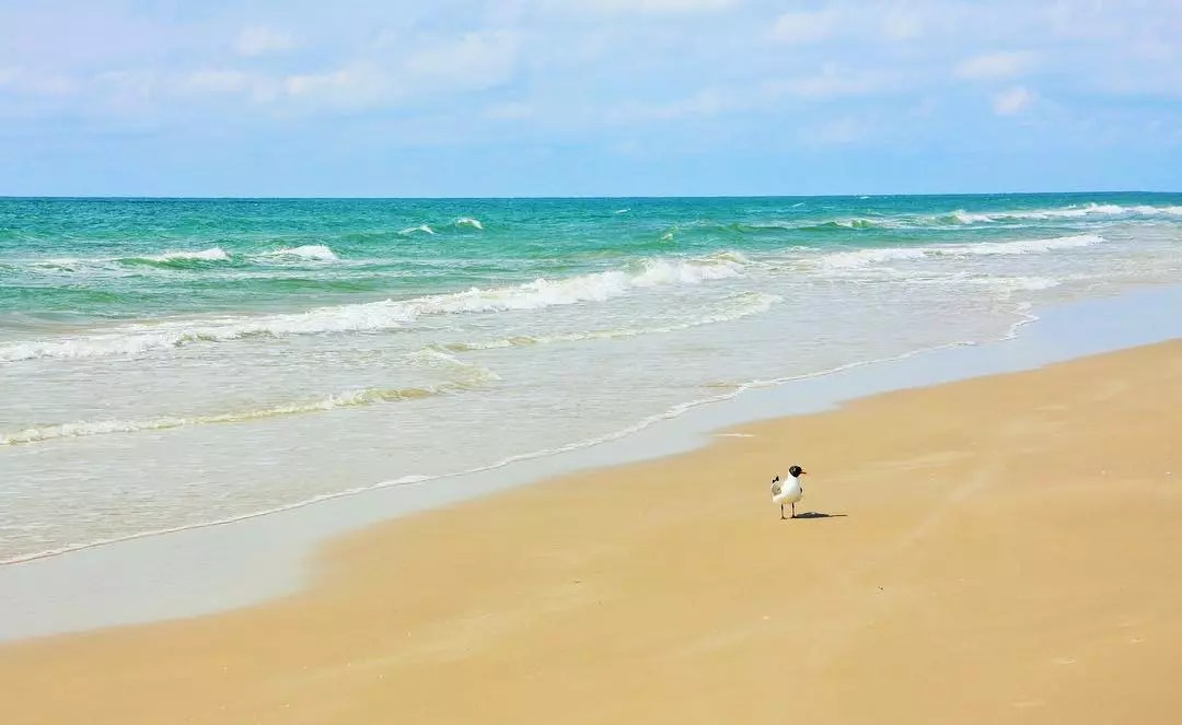 Waves Lapping Up on South Padre Island Beach on a Sunny Day. Photo by Instagram user @allisonlegrantphotography