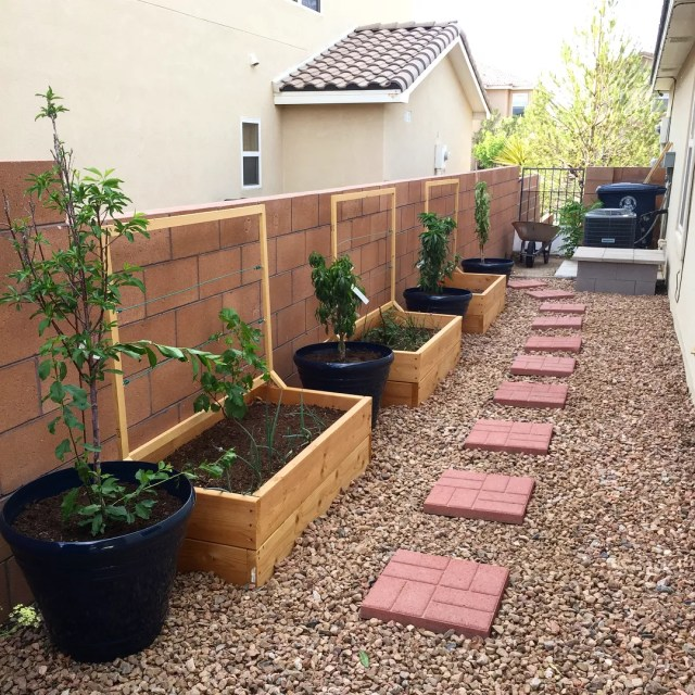 Grassless backyard with wood planters and brick path. Photo by Instagram user @amwachtel