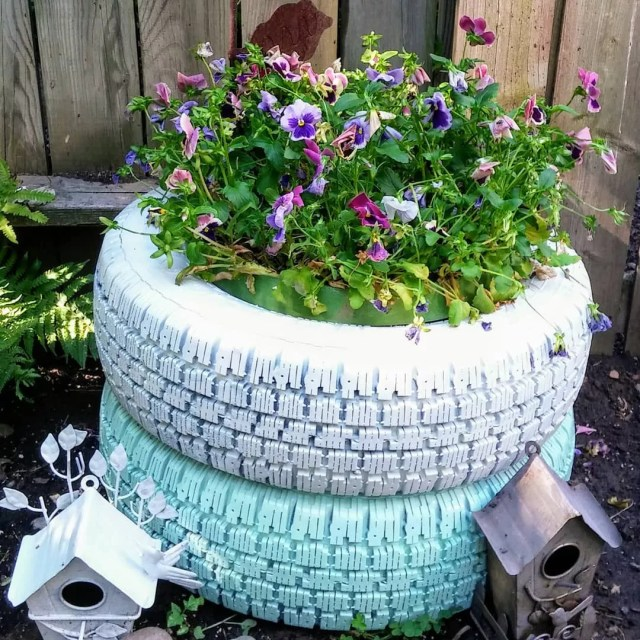 Tires painted white and blue and filled with purple flowers. Photo via @janetrymal