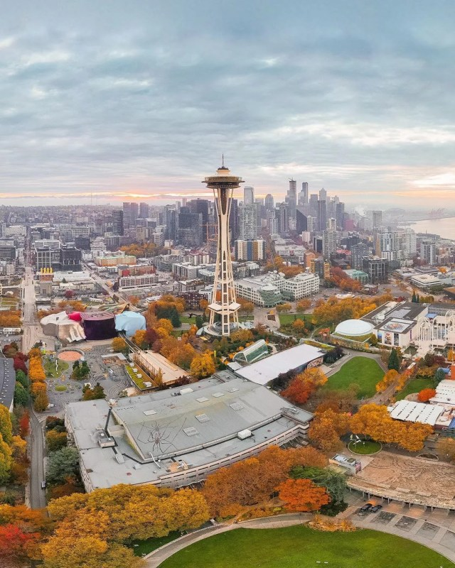 Seattle, WA skyline. Photo by Instagram user @codycm