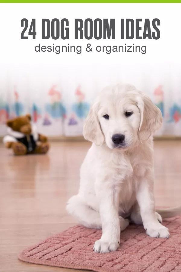10bda74e 24 Ideas for Designing & Organizing a Dog Room | Extra Space Storage
