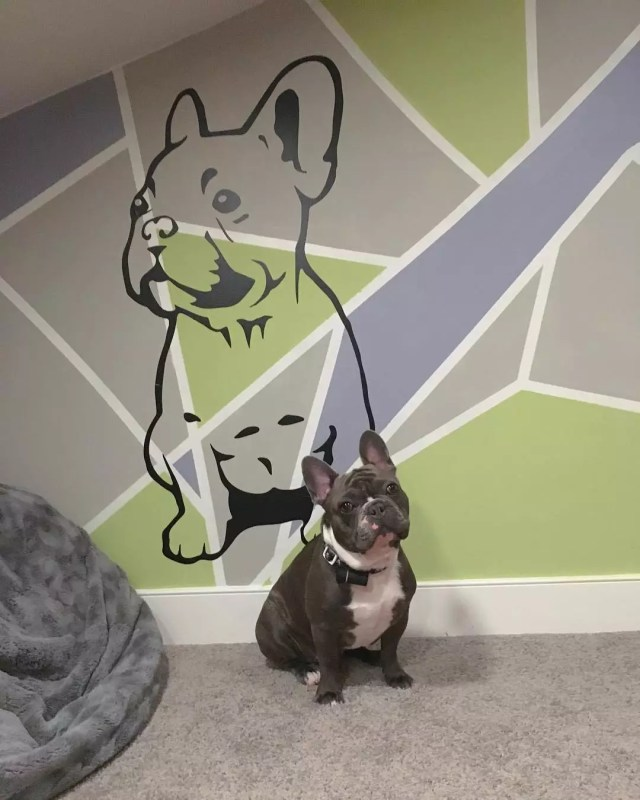 Wall Painted with the Likeness of French Bulldog. Photo by Instagram user @frencholive01