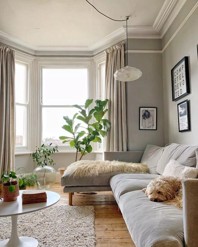 Living Room with Couch, Plants, and Photos. Photo by Instagram user @deecampling.