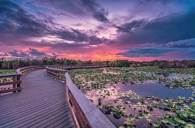 Sunset over a trail and water in the Everglades in Miami, FL. Photo by Instagram user @evergladesnps
