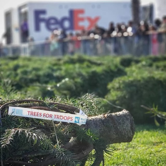 Christmas tree from Trees for Troops. Photo by Instagram user @the_ta_landi16