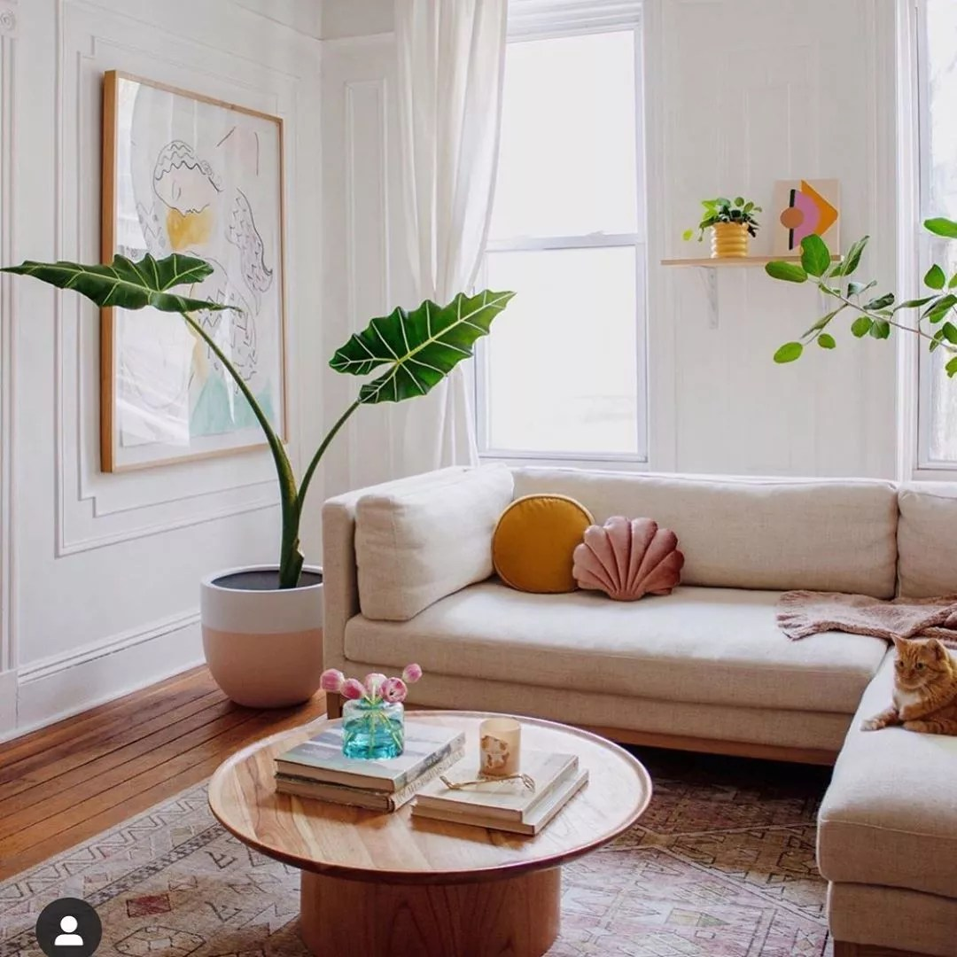 White living room with tan couch and color pillows with a floor plant. Photo by Instagram user @balalaladecor