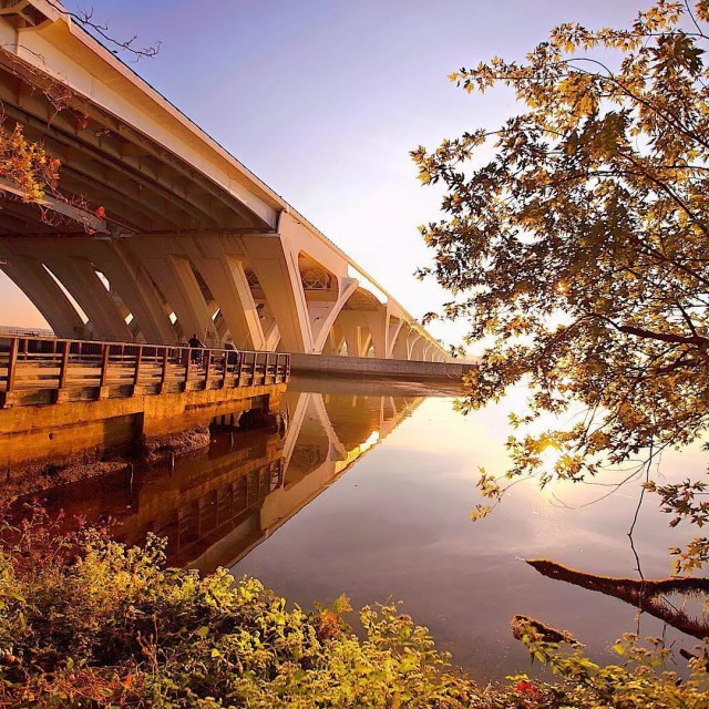 Fall foliage next to the Potomac River. Photo by Instagram user @visitalexva
