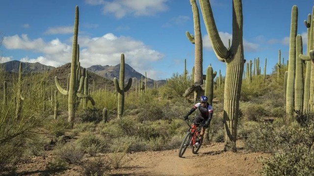 Guy riding his bike in the desert. Photo by Instagram user @vamosatucsonoficial