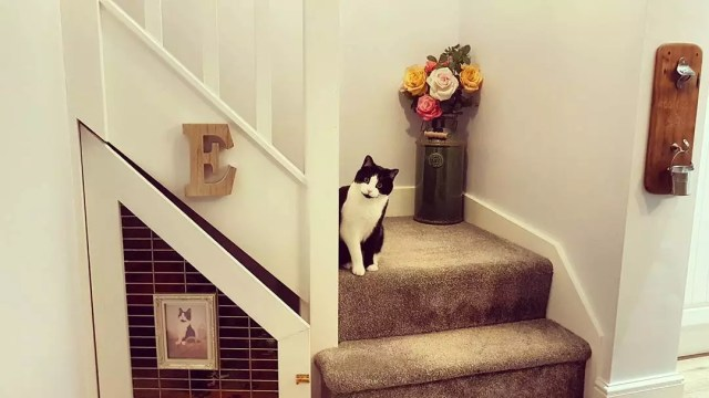 Cat sitting on stairs next to under the stairs kennel. Photo by Instagram user @sarahs_yorkshire_home