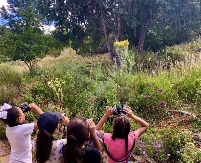 kids looking through binoculars at the randall davey audubon center & sanctuary photo by Instagram user @audubonnewmexico