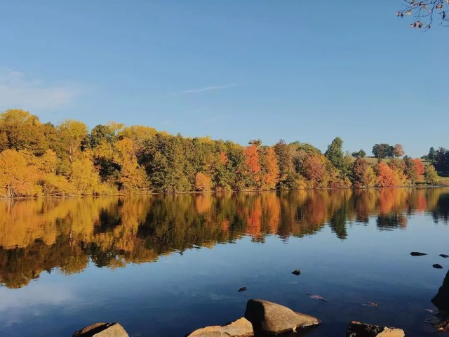lake in Worcester, MA in the fall with trees changing color photo by Instagram user @vietnamese.travelers