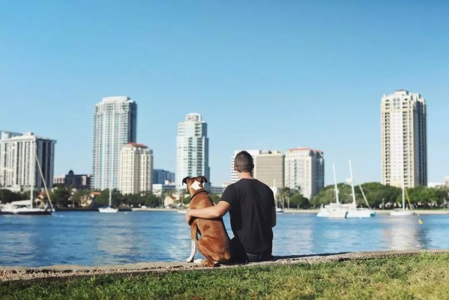Man Sitting With His Dog Along the Bay. Photo by Instagram user @stpetefl