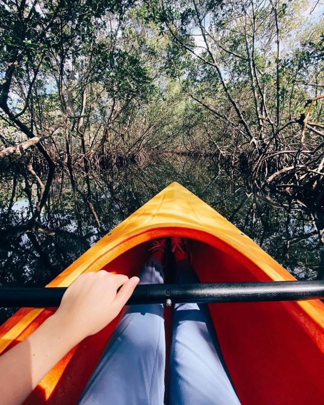 Woman Sitting in a Kayak Among the Trees. Photo by Instagram user @lana_kars