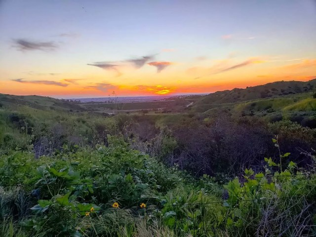 Sunrise Photo of Irvine, CA from the Irvine Ranch Conservancy. Photo by Instagram user @your_favorite_hiker