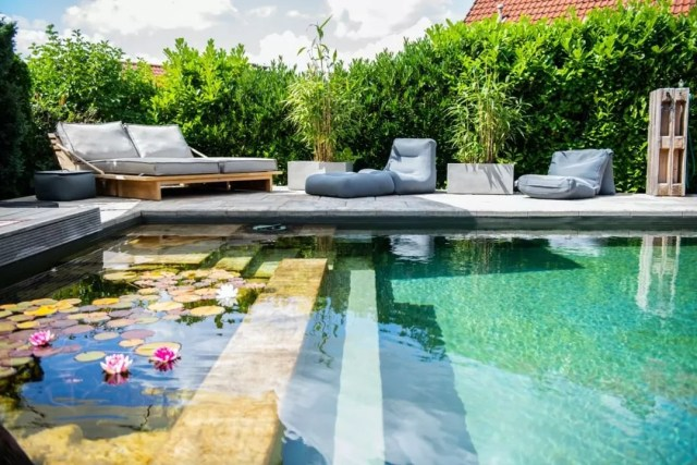 Backyard Natural Swimming Pool. Photo by Instagram user @phospat_lehvoss