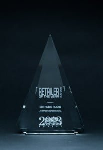 EA-Retailer-of-The-Year-Trophy-1-206x300