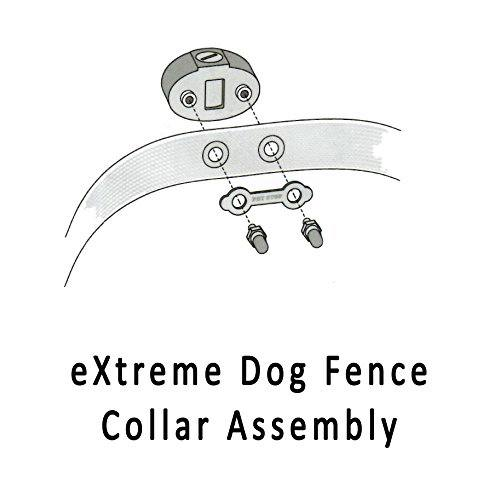 Collar Assembly