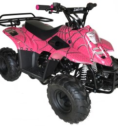 panther kids 110cc atv youth quad 4 wheeler small mini size  [ 1000 x 908 Pixel ]