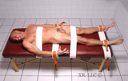 Hospital Bed Restraint System