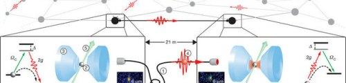 Rubidium atom/photon quantum network