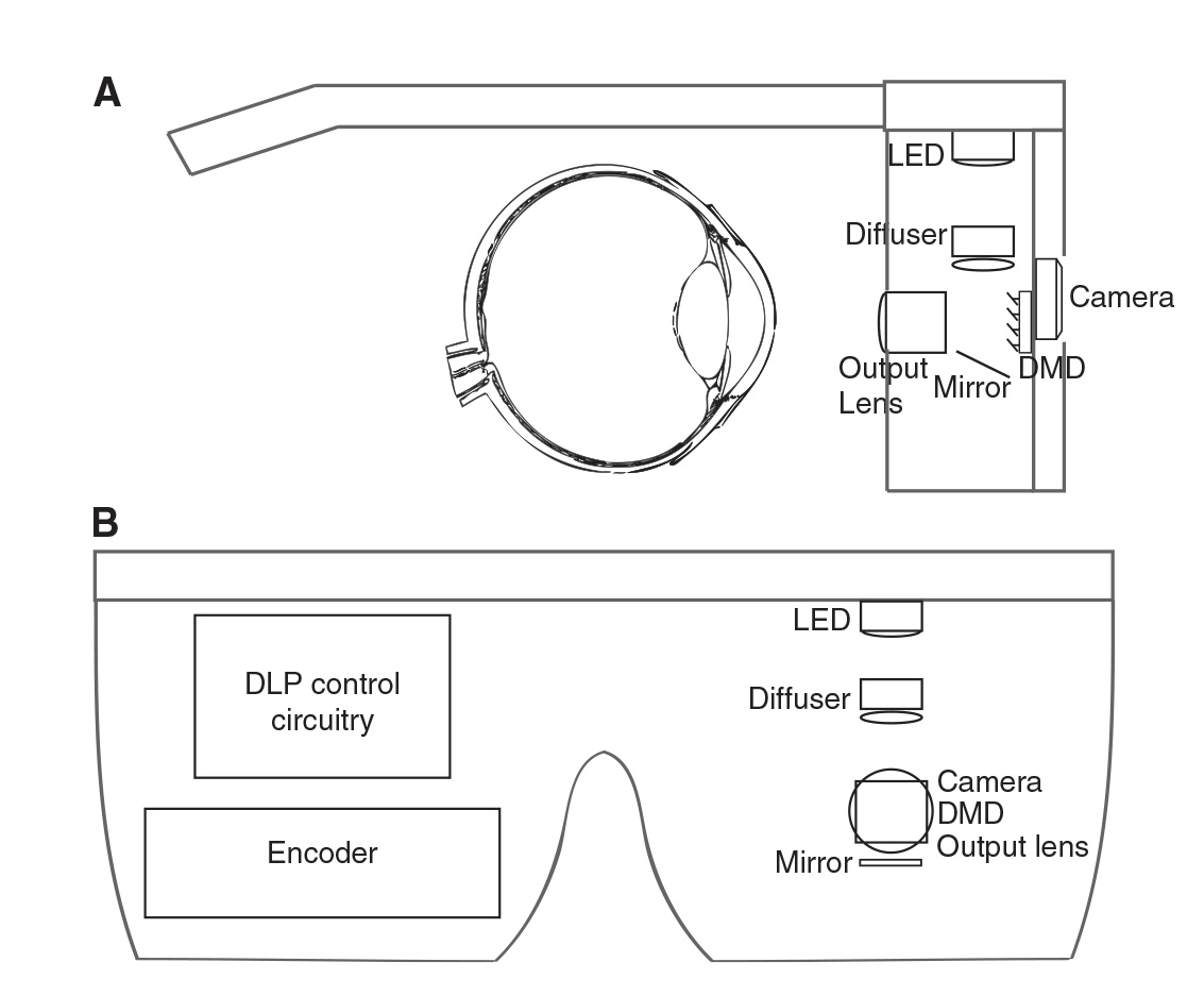 diagram of artificial eye simplicity legacy xl wiring the past present and future bionic eyes extremetech a prosthetic setup