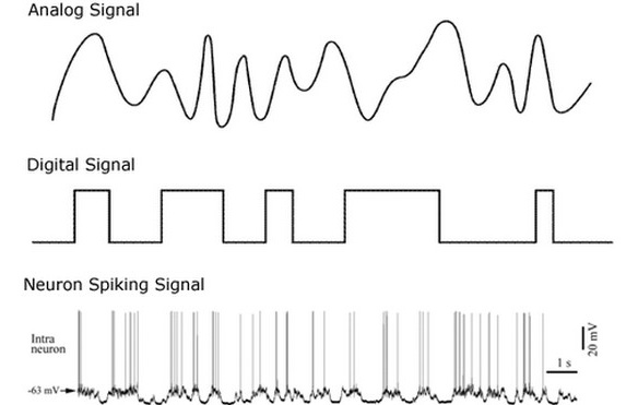 Neuristors: The future of brain-like computer chips