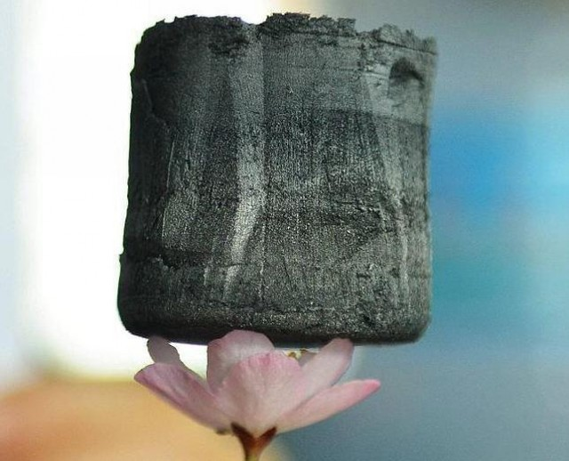 The graphene aerogel, balancing on the petals of a flower. The cube, which is roughly an inch across, probably weighs around 10 milligrams.
