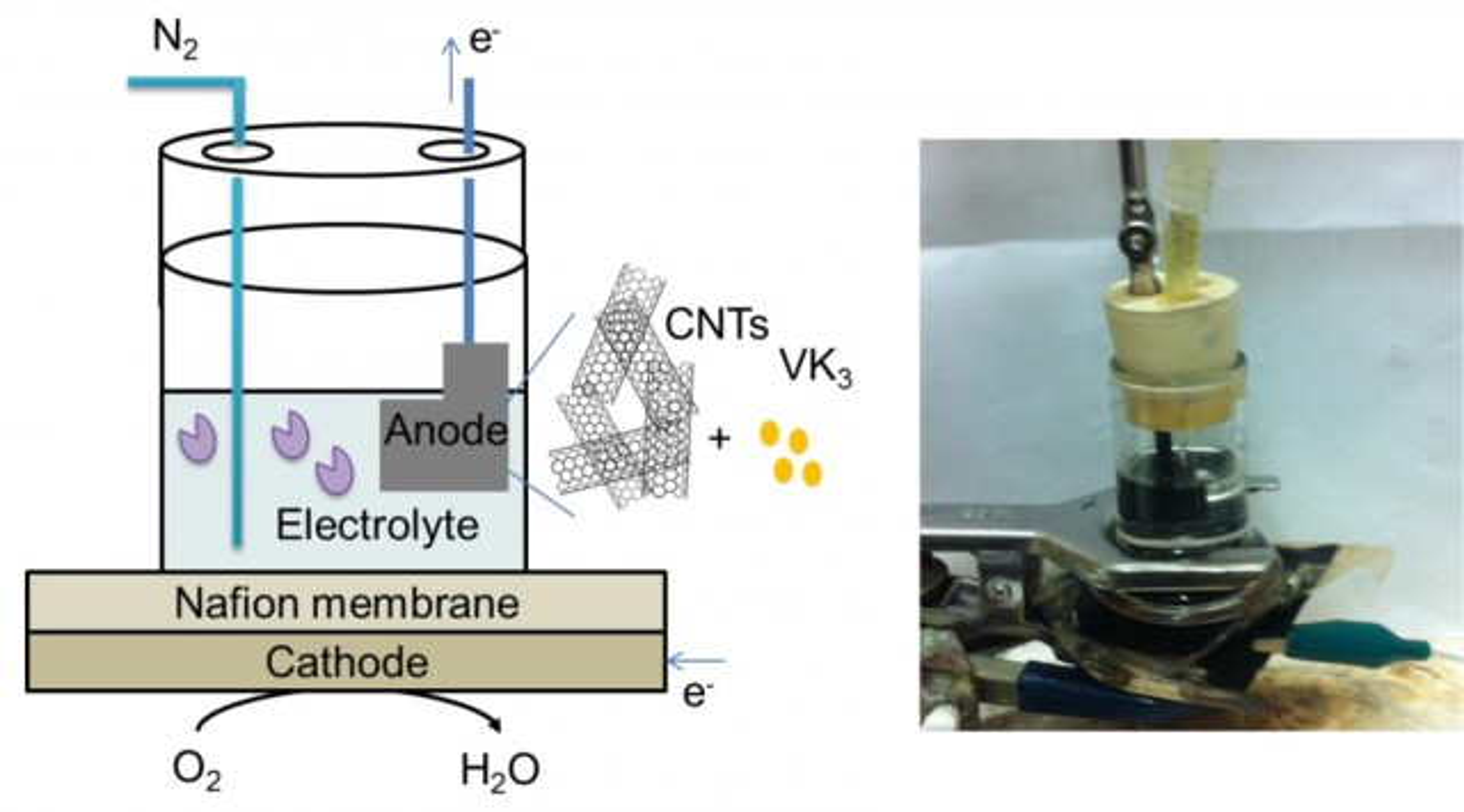 Enzymatic fuel cell diagram