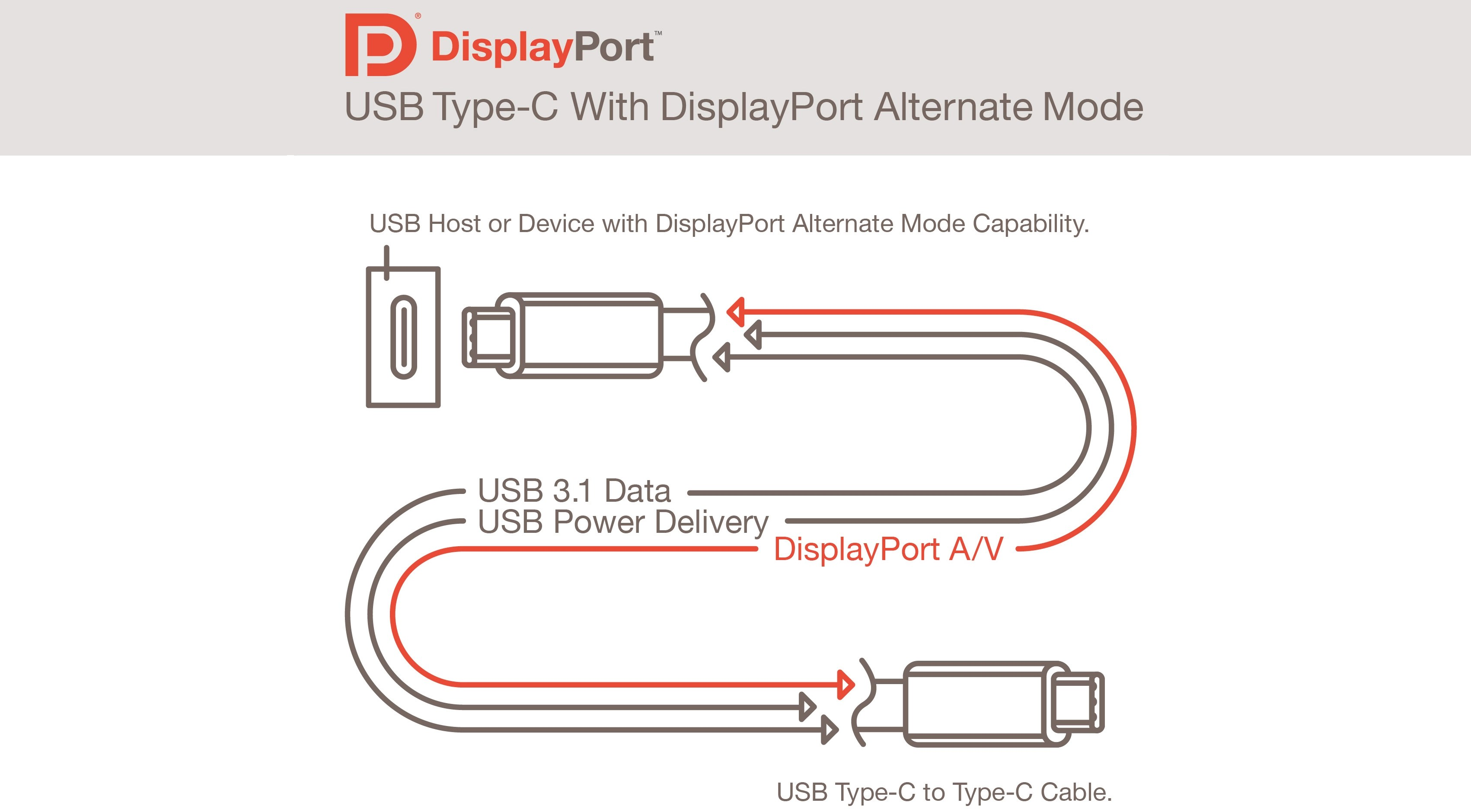 Usb Type C Connector Will Also Support Displayport