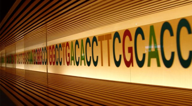 DNA_sequence