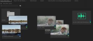 Premiere Pro's new Free-form Project view lets you organize your media visually