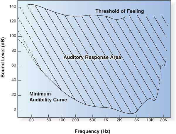 The Mysterious Loudness Control What Does It Do