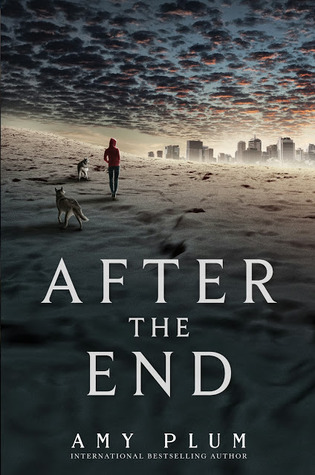 Hubby Reads After the End by Amy Plum
