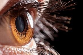 Cornea Albuquerque | What is the Cornea? | Eye NM