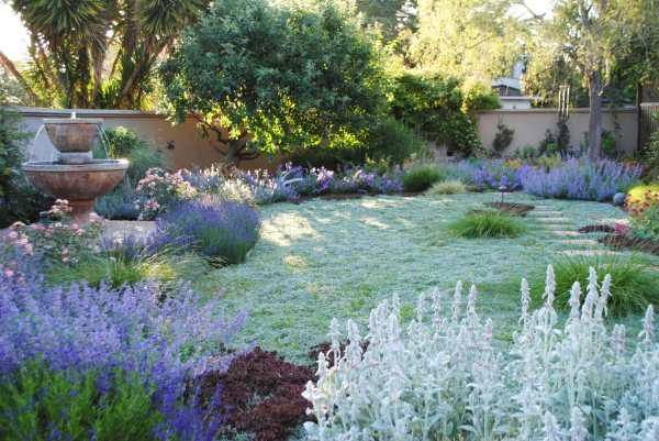 stylish and sustainable garden