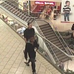 Police Seek Help In Pasadena Purse Snatching