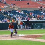 Rock Cats shell Baysox