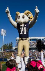 SanJose-Navy-Football-October-25-2014-21